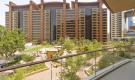 https://www.henrywiltshire.ae/property-for-rent/dubai/rent-apartment-palm-jumeirah-dubai-lwmpj-r-22918/
